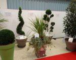 loc-1-ensemble-plantes