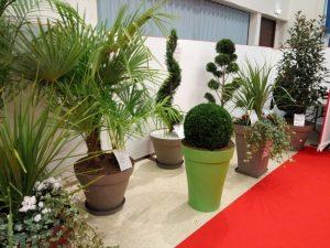 loc-2-ensemble-plantes